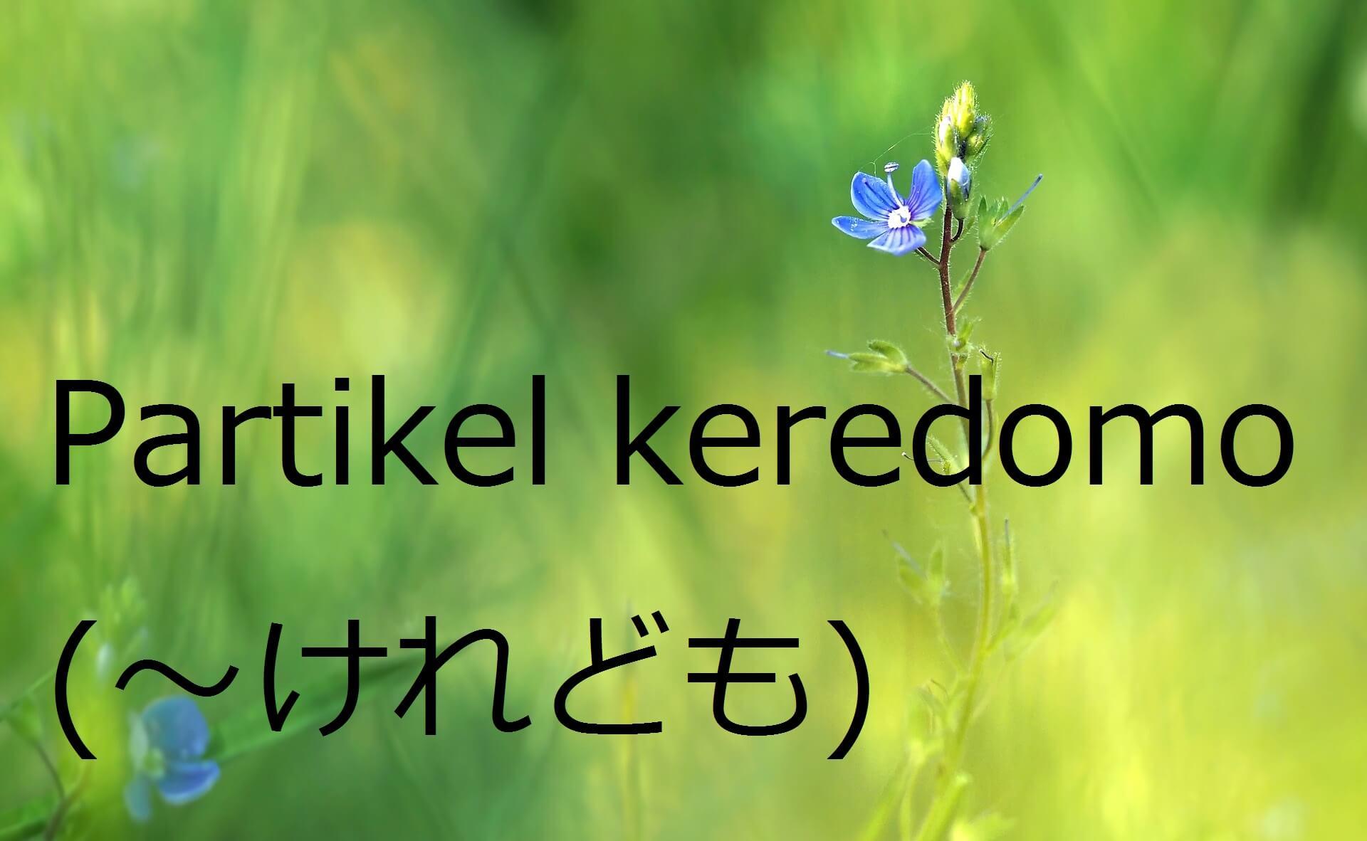 "Partikel ""keredo"" atau ""keredomo"" – Belajar Bahasa Jepang"
