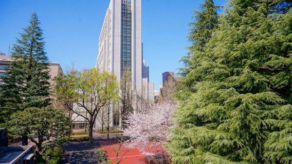 Informasi Kuliah dan Beasiswa di Universitas Aoyama Gakuin