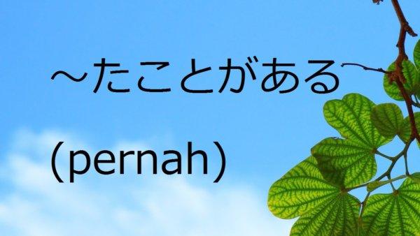 Ta Koto Ga Aru (Pernah) – Belajar Bahasa Jepang